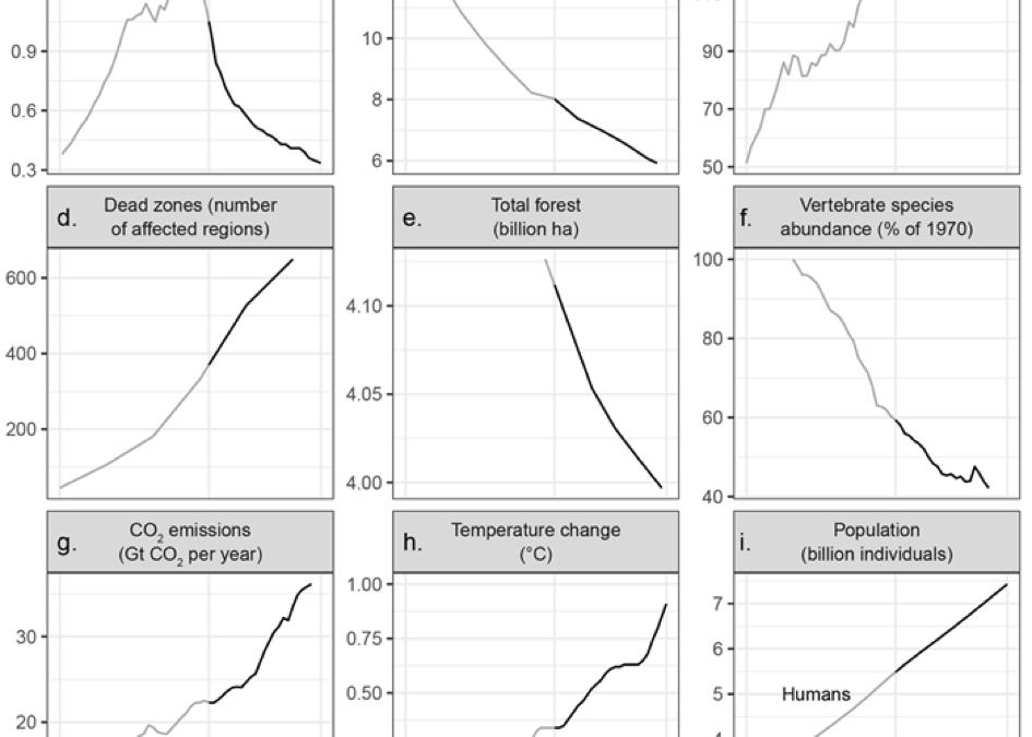 Evolution des problématiques environnementales entre 1960 et 2016.